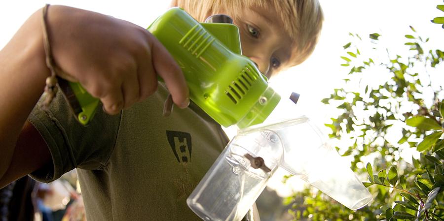 gadget aventura niños - Bioexplorer Collect-insect