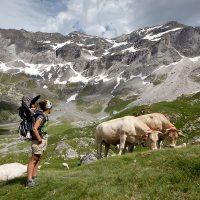 Las mejores mochilas portabebés de montaña 2017