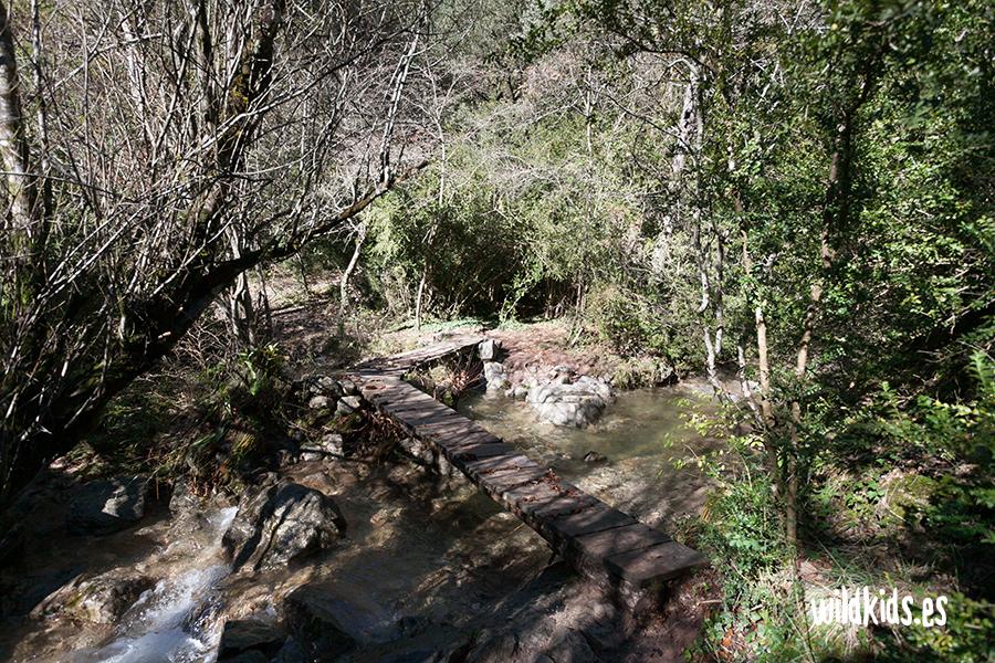 Pequeño puente de madera cerca del Bullidor de llet