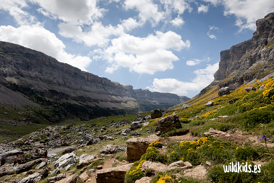 Vista del valle de Ordesa desde Cola de Caballo