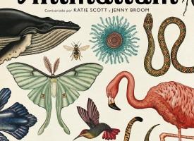 Animalium, un museo abierto las 24h