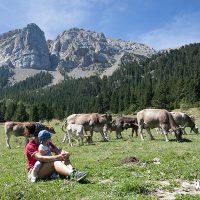 10 lugares imprescindibles para visitar en el Pirineo catalán con niños