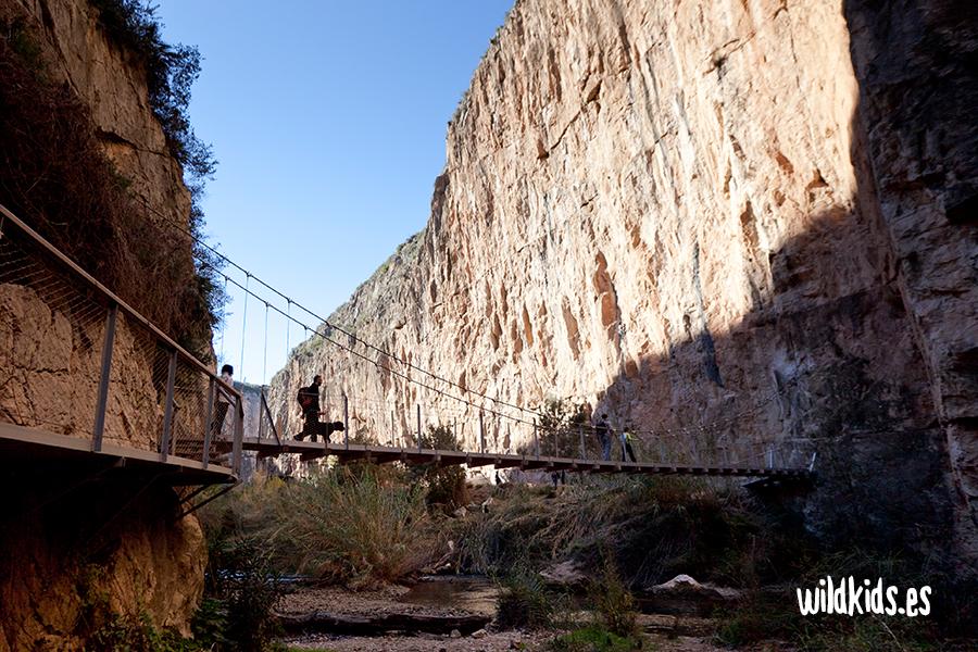 El segundo de los puentes colgantes sobre el Turia