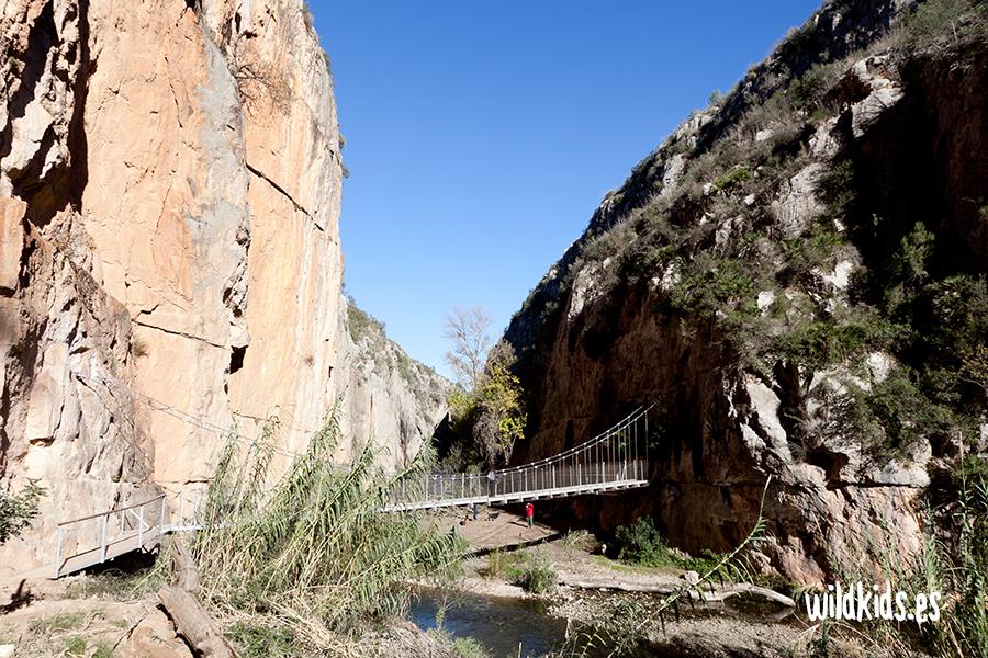 Los puentes colgantes desde el fondo del cañón