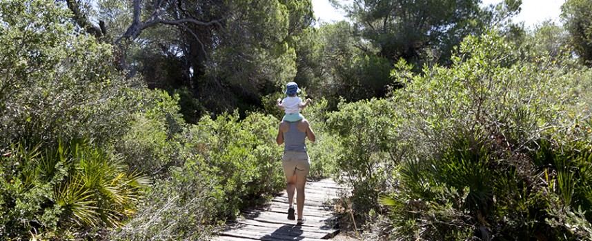Itinerario por la Gola del Pujol en la Albufera de Valencia