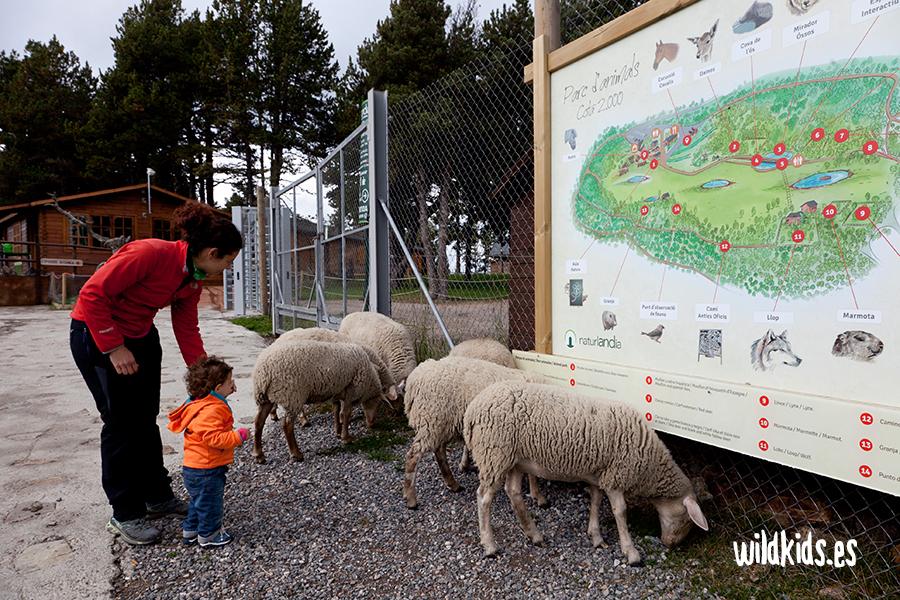 Andorra con niños - Naturlandia