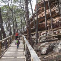 Pinturas Rupestres del Arrastradero en el Paraje de los Pinares de Rodeno (Albarracín)